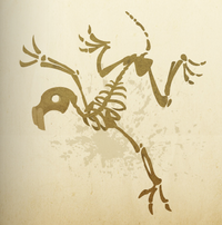 Boney creatures