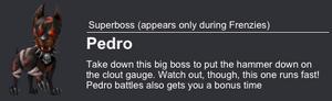 Pedro Boss