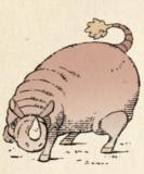 025 rhinosaur
