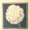 File:ふわふわわたあ fluffy airy cotton candy.png