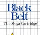 Black Belt (video game)