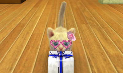 File:-Nintendogs Cats- 005.jpg