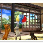 File:2 dogs and a cat with beachball (2).jpg