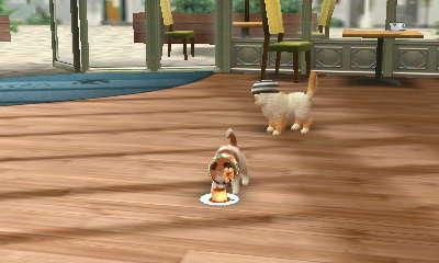 File:Nintendogs+Cats 028.JPG