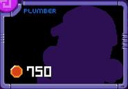 Plumber lock