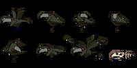 Birds (Icebreaker series)