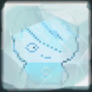 In ice 1
