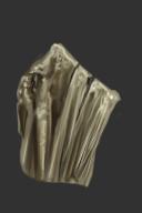 Petrified Stump Shield