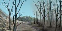 Ashen Trail