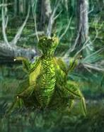 File:Leafy Mantis.jpg