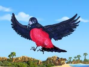 File:Redbelly Bird.jpg