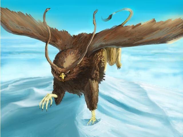 File:Owlhawk.jpg