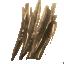 Rotting Twigs1