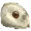 Owlmouse Heads