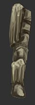Petrified Bark Covered Leg