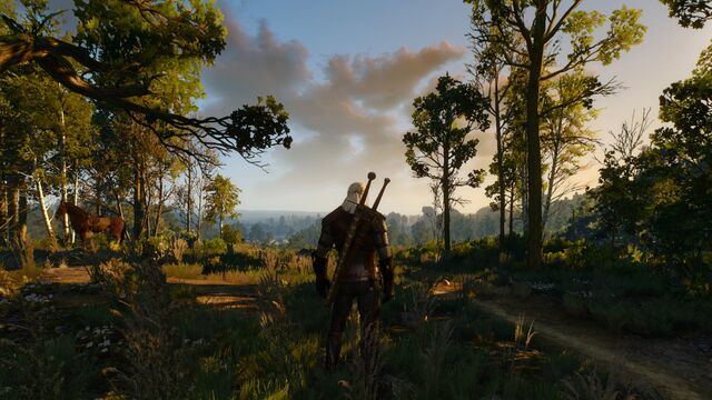 File:Witcher 3 No Hud.jpg