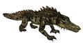 Crocodile (Guild Wars)