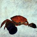 Cannon Crab