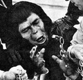 Aldo (Chimpanzee)