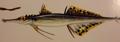Prickle Fish (Ichthyspineus celox)