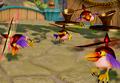Buzzer Beak (Species)