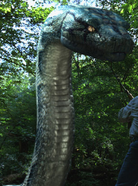 Python Boa Vs Python Non Alien Creatures Wiki