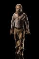 African Werewolf