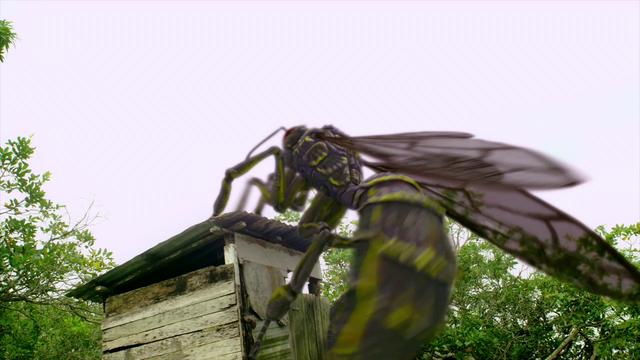 File:Dragon Wasp.png