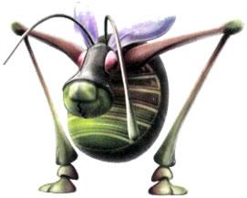 File:Antenna Beetle.jpg