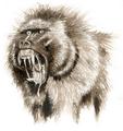Devil Monkey Drawing