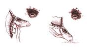Eyeshadrokk05