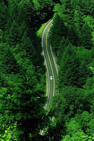 File:Wolfgang-Road.JPG