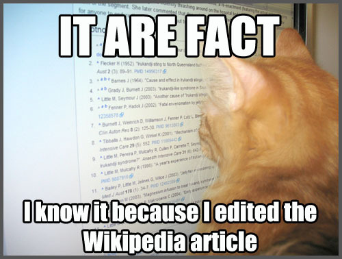 File:Wikipedia cat.jpg