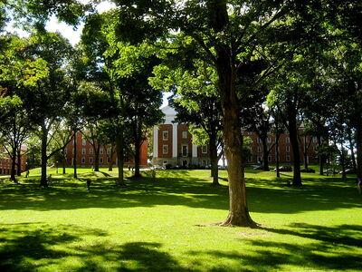800px-Amherst College Main Quad