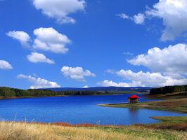 Vlasinsko-jezero