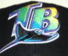 File:TB D-Rays cap insignia.jpg