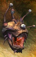Aberration eyeball