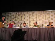 NWN2 Comicon Panel2