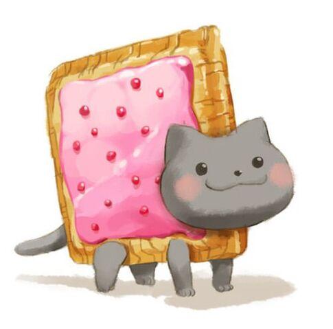 File:Realistic Nyan Cat.jpg
