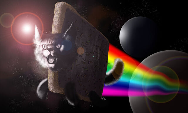 File:Nyan Cat 25.jpg