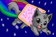 Nyan Cat 30