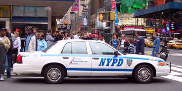 Nypd1421