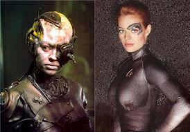 Freed Borg