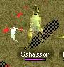 Sshassor