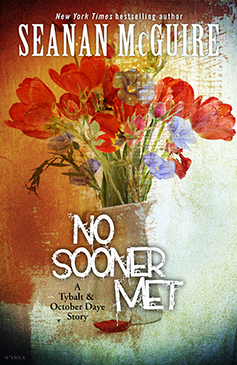 No sooner met cover 237x365