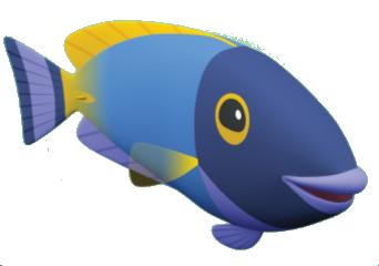 File:Surgeon Fish.png