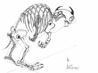 File:Elum skeleton concept.jpg