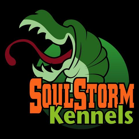 File:SoulStormKennels.png