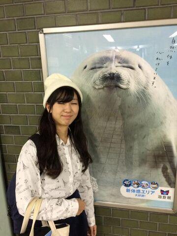 File:B61DbdKCAAIRyoO.jpg