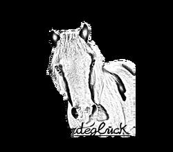 Pony-logo.png